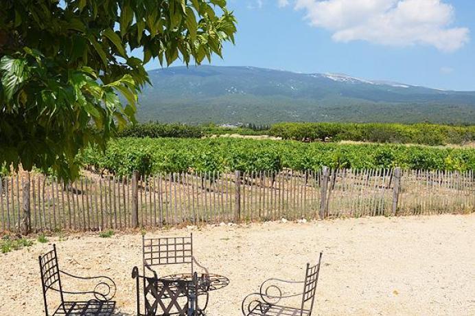 location saisonnière en Provence, location gîte animaux de compagnie sont les bienvenus à Bédoin, Ventoux