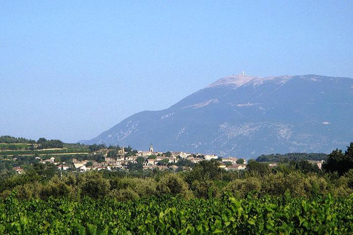 vente immobilière vue Mont Ventoux
