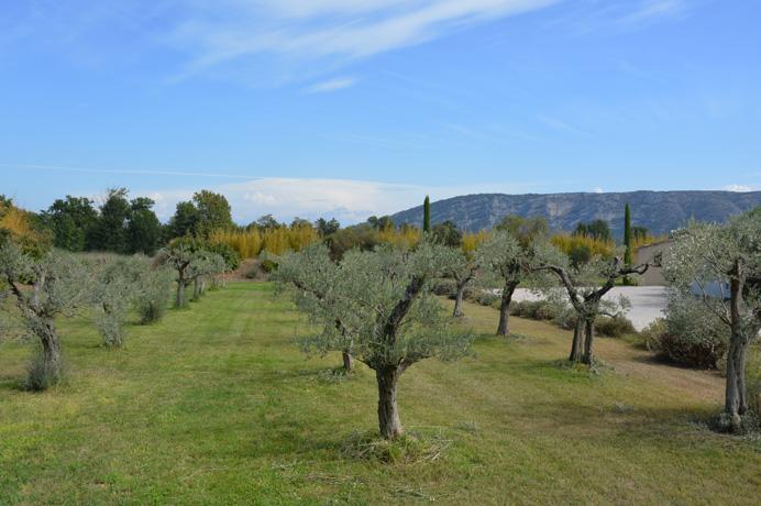 investeringsproject kopen in de Provence voor vakantieverhuur, for sale luxury villa in Provence,Luberon