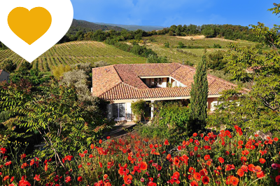 très grande villa romaine entièrement meublée avec une belle piscine, située dans un jardin provençal avec des oliviers multi-centenaires et une vue sur le Ventoux