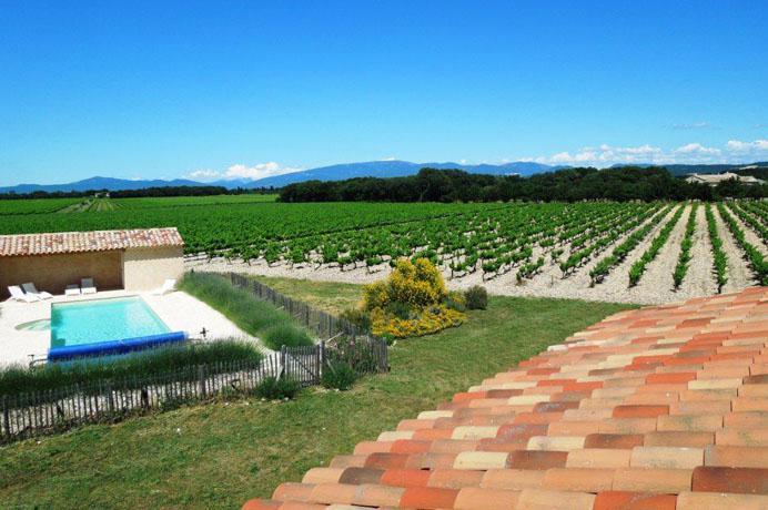 grote mas met wijngaard en truffelgaard te koop in de Provence met zicht op de Mont Ventoux