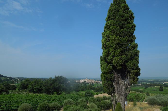 mooi huis kopen in de Provence tussen de wijngaarden met zwembad voor vakantie verhuur