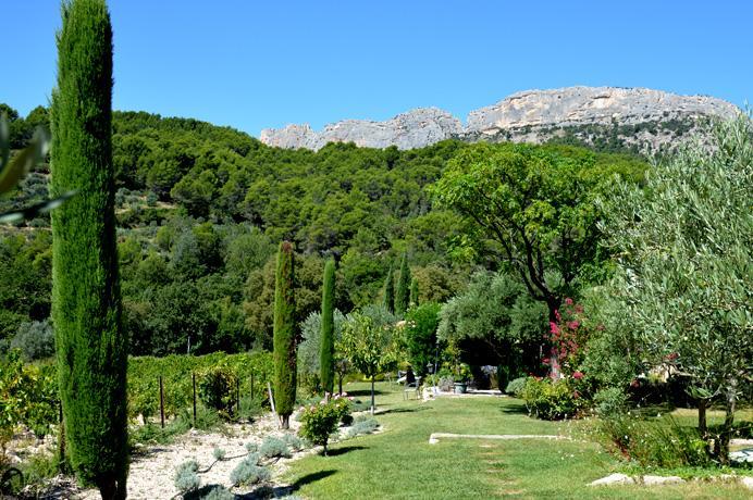 B&B te koop in Zuid-Frankrijk Provence Mont Ventoux